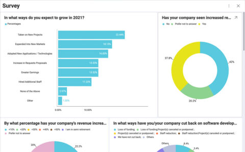 Dashboard showing 2020 trends in software development and analytics.