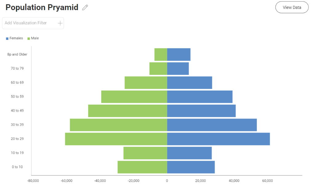 population pyramid chart completed