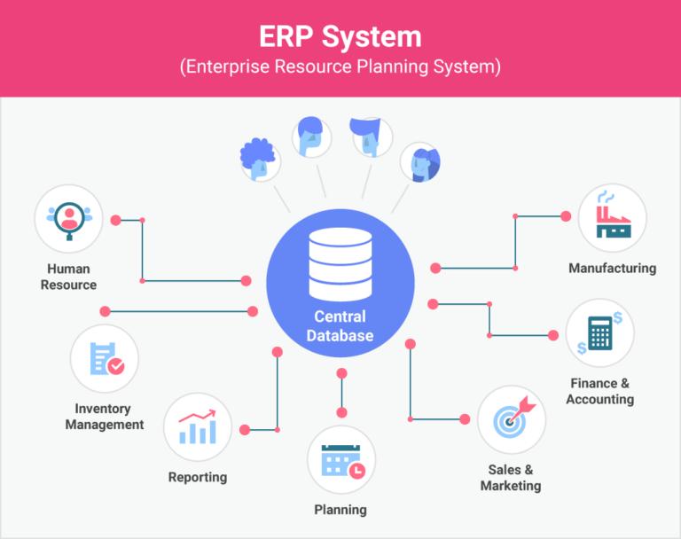 erp embedded analytics application